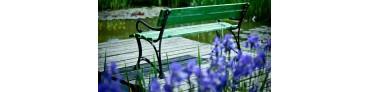 Banc et chaise de jardin