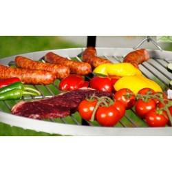 Grille en inoxydable sur trépied + Brasero de jardin HAITI